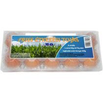 Friss étkezési tojás  10 db-os L méret 63 - 73g