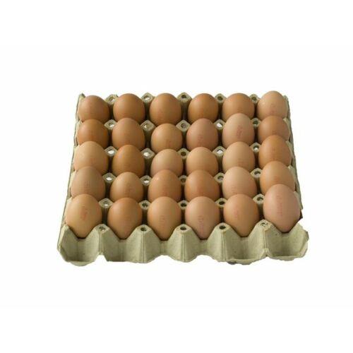Friss étkezési tojás ózongázzal fertőtlenitett fóliás  L méret 30 db-os 63 - 73 g