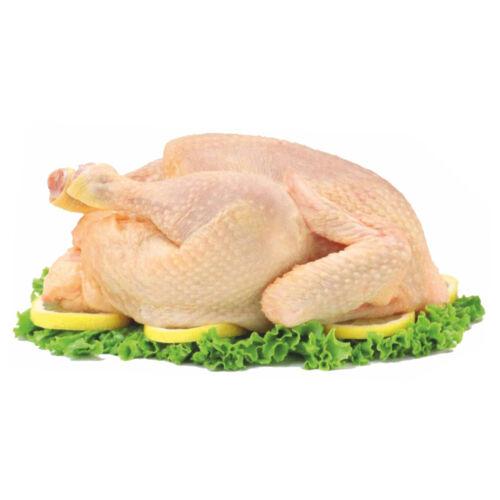 Friss magyar grill csirke 1,1 -1,2 kg cca 12kg dv107